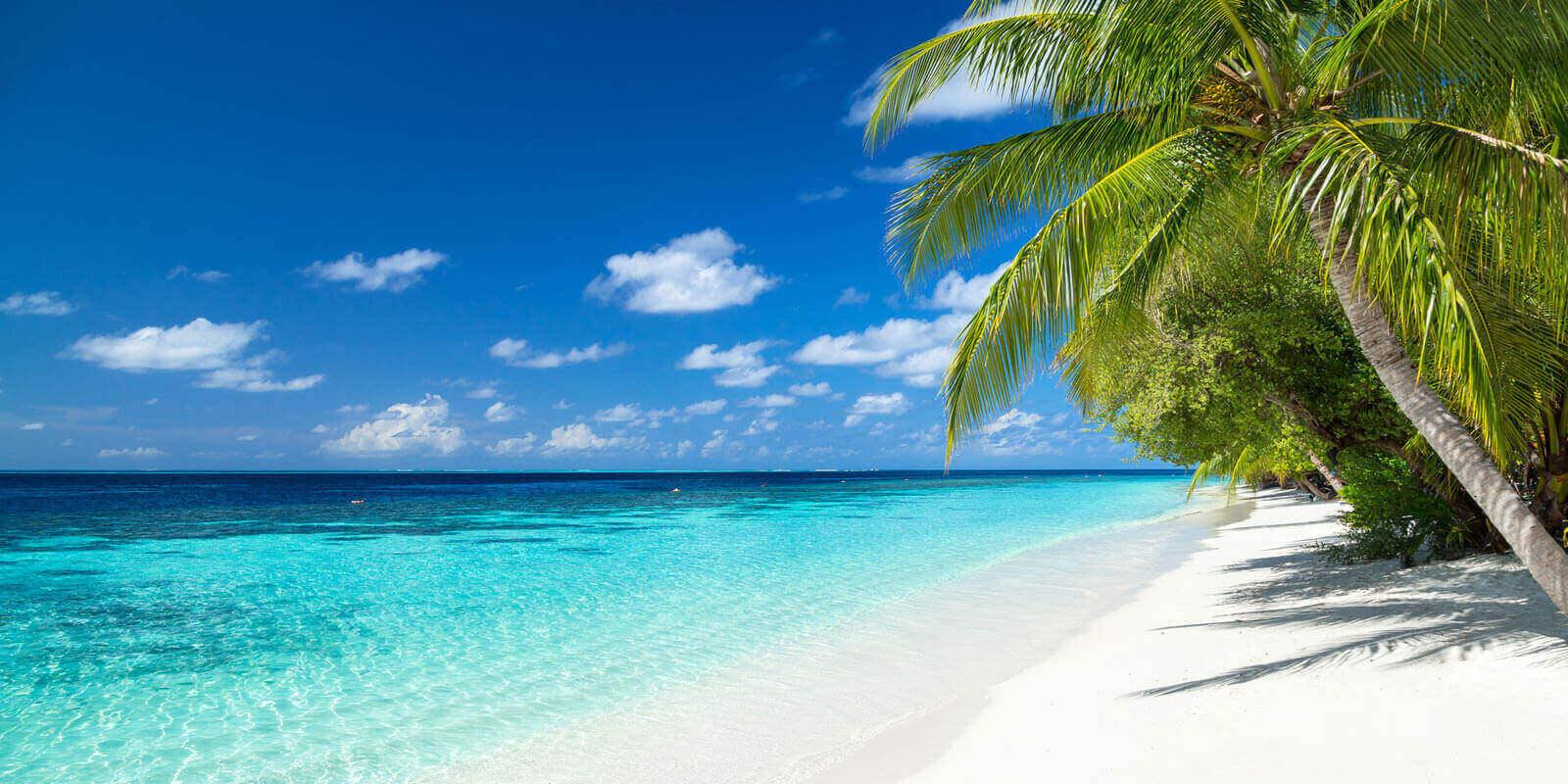Bahamas Beach Side